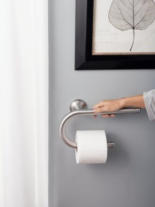 BRSafety1_moen-grab-bar-with-toilet-paper1